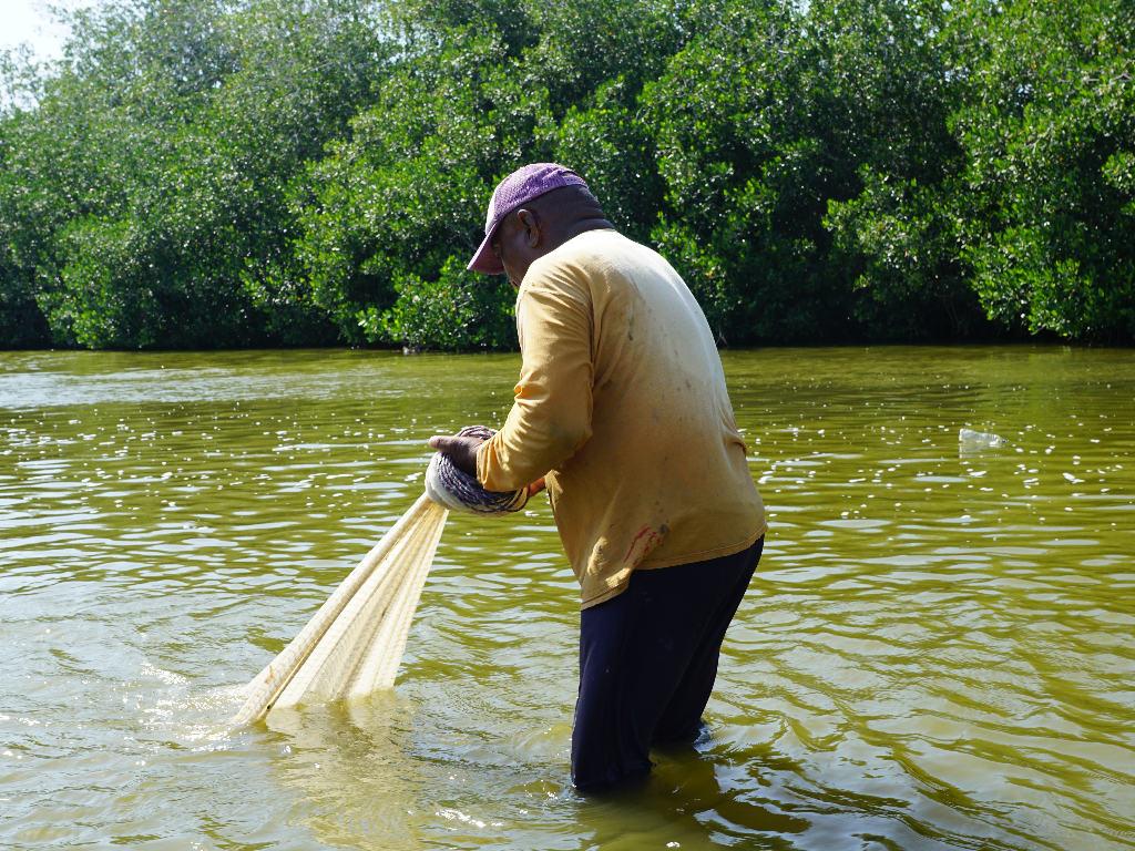 fishing in river with net
